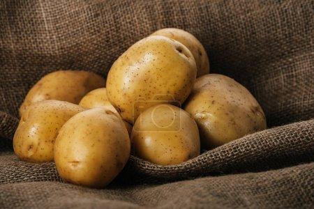 Photo pour Pommes de terre crues biologiques sur sac brun - image libre de droit