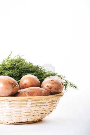 Photo for Raw potatoes with fresh dill in wicker basket on white background - Royalty Free Image