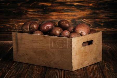 Photo pour Pommes de terre fraîches mûres dans une boîte sur fond de bois - image libre de droit