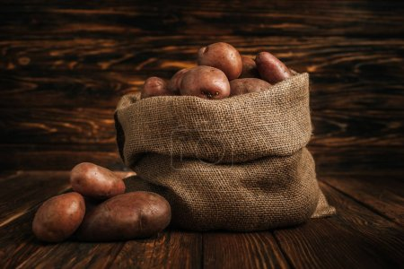Photo for Ripe potatoes in rustic sack on wooden background - Royalty Free Image