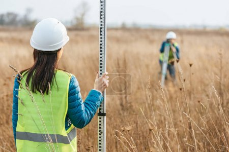 Photo for Selective focus of surveyors with survey ruler and digital level in field - Royalty Free Image