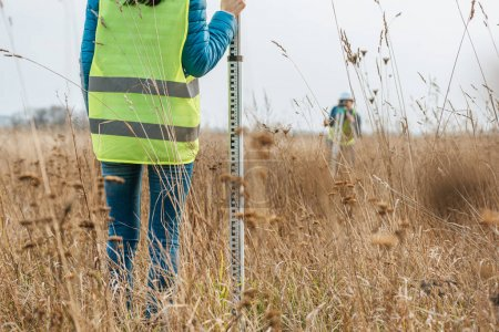 Photo for Cropped view of surveyors with survey ruler and digital level in field - Royalty Free Image