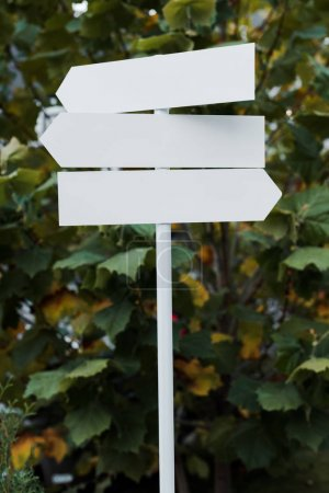 white and empty directional arrows near green leaves