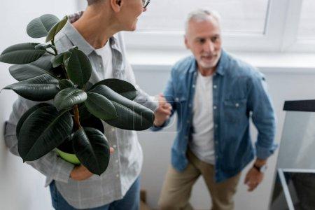 """Photo pour Vue en coupe d'une femme d """"âge mûr avec plante tenant la main de l'homme dans une nouvelle maison - image libre de droit"""