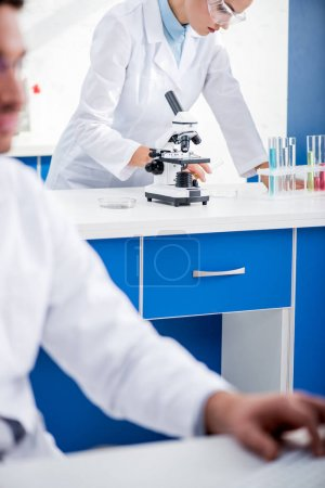 Photo pour Concentration sélective du nutritionniste moléculaire effectuant un test en laboratoire - image libre de droit