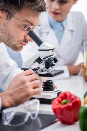 selective focus of molecular nutritionist using microscope in lab