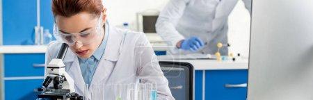 Photo pour Prise de vue panoramique du nutritionniste moléculaire au microscope en laboratoire - image libre de droit