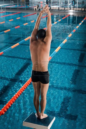 Photo for Back view of athletic swimmer standing with hands above head near swimming pool - Royalty Free Image