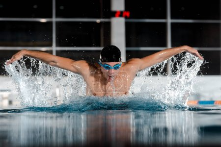 Photo for Selective focus of sportsman swimming butterfly stroke in swimming pool - Royalty Free Image