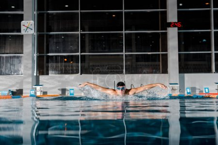 Photo pour Beau nageur course de papillon dans la piscine - image libre de droit