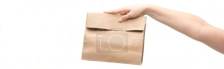panoramic shot of woman holding paper bag isolated on white