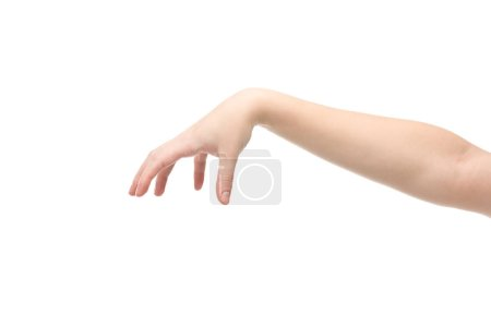 cropped view of woman showing hold gesture isolated on white
