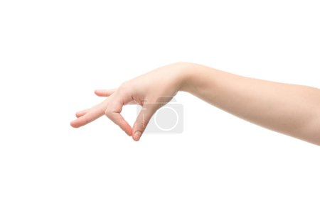 cropped view of woman showing holding hand gesture isolated on white