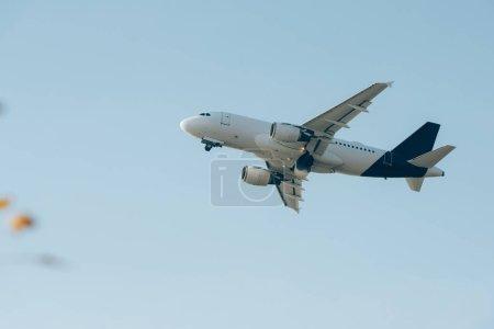 Photo pour Vue à faible angle du plan dans un ciel clair - image libre de droit
