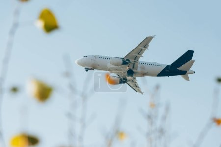 Selective focus of airplane in blue sky above field view flowers