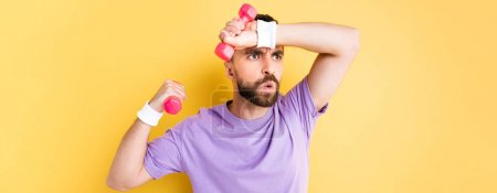 Photo for Panoramic shot of tired bearded sportsman holding small dumbbells isolated on yellow - Royalty Free Image