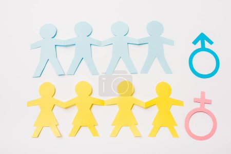 top view of paper cut connected people near gender signs isolated on white, sexual equality concept