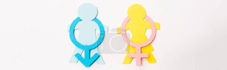 panoramic shot of colorful paper cut people near gender signs isolated on white, sexual equality concept