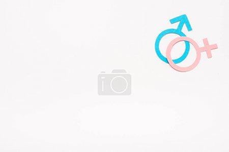 Photo pour Symboles bleus et roses isolés sur le blanc, concept d'égalité des sexes - image libre de droit