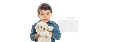 Photo pour Plan panoramique de mignon garçon tenant chiot Havanais isolé sur blanc - image libre de droit