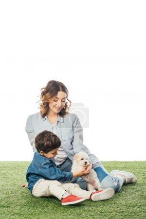 Photo pour Souriant mère et fils caressant chiot Havanais isolé sur blanc - image libre de droit