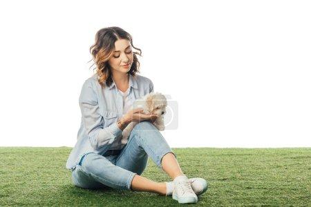 Frau sitzt auf Gras und schaut Havaneser Welpe isoliert auf weißem Grund an
