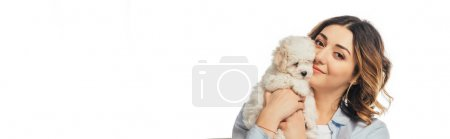 panoramic shot of smiling woman holding Havanese puppy isolated on white