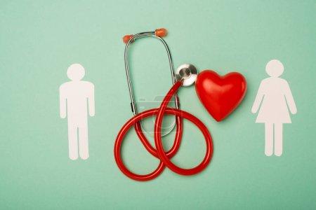 Vista superior del estetoscopio, corazón rojo decorativo con símbolos masculinos y femeninos sobre fondo verde, concepto del día mundial de la salud