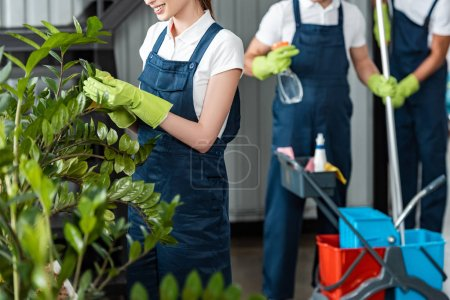 Photo for Cropped view of smiling cleaner wiping plants while colleagues standing on background - Royalty Free Image