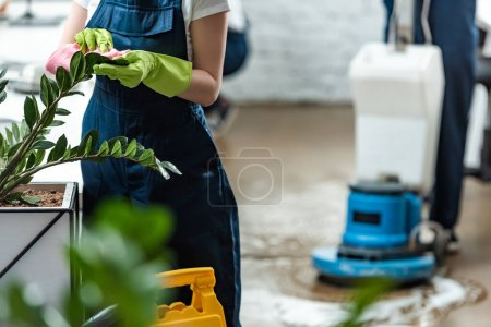 Photo for Partial view of cleaner wiping office plants with rag near floor cleaning machine - Royalty Free Image