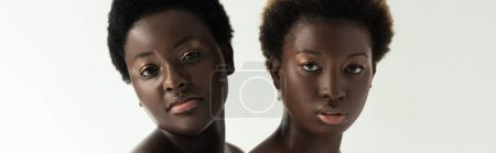 Photo for Panoramic shot of african american girlfriends looking at camera isolated on grey - Royalty Free Image