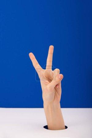 Photo pour Vue recadrée de la femme montrant signe de paix isolé sur bleu - image libre de droit