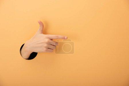 Photo pour Vue recadrée de la femme pointant du doigt sur l'orange - image libre de droit