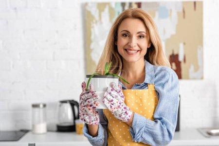 Photo pour Vue de face de belle femme montrant pot de fleurs avec aloès et regardant la caméra dans la cuisine - image libre de droit
