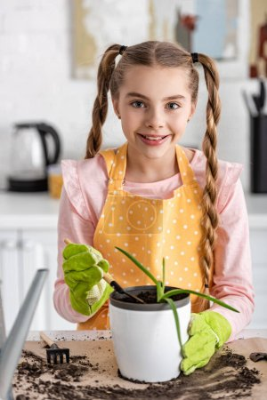 Photo for Front view of cute child with shovel and flowerpot with aloe near table with ground in kitchen - Royalty Free Image