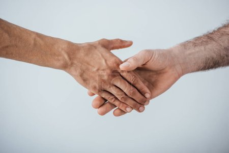 Photo for Cropped view of men shaking hands isolated on grey - Royalty Free Image