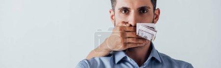 Foto de Foto panorámica de hombres que tienen dólares en mano y que cubren boca a hombre aislados en gris. - Imagen libre de derechos