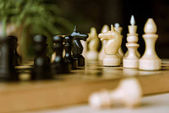 Chess pieces knights on chessboard