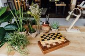 green plants in pots with chess boards