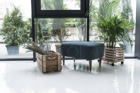 Photo pour Intérieur de vide créatif bureau avec chaise et fleurs séchées en boîte en bois - image libre de droit