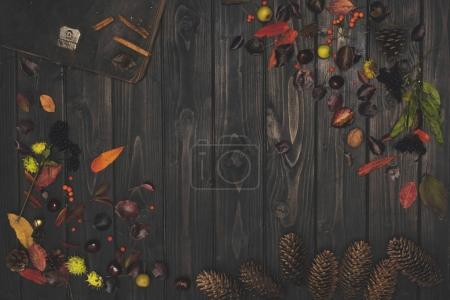 dried leaves and pine cones