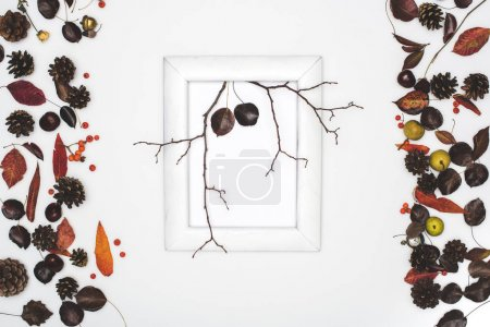 dry leaves and branches in frame