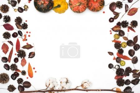 dried leaves and pumpkins
