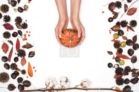 Photo for Top view of hands holding ripe pumpkin and dried autumn leaves on white - Royalty Free Image
