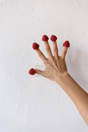Raspberries on female hand