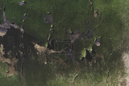 Photo pour Vue rapprochée de la vieille texture rugueuse des murs verts altérés - image libre de droit