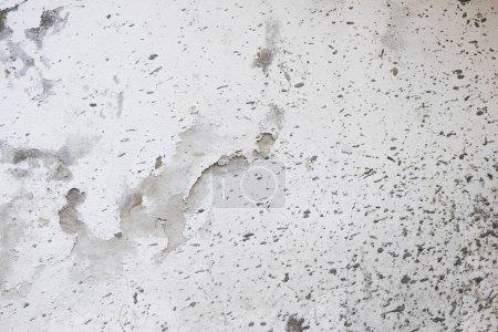 Photo pour Texture mur brut patiné blanc - image libre de droit