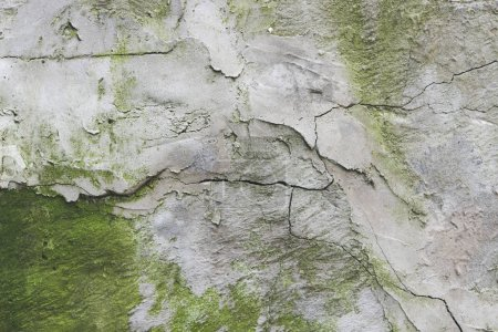Photo for Close-up view of old weathered wall background - Royalty Free Image