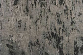 grey weathered surface