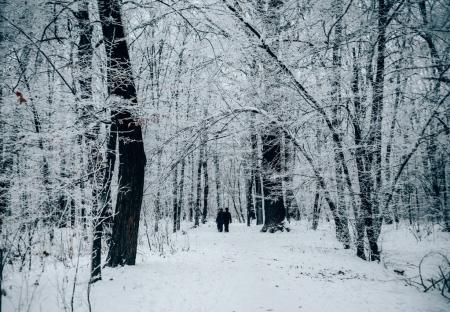 couple walking through winter forest